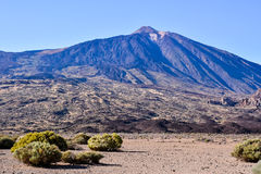 Desert Landscape in Volcan Teide National Park Stock Photo