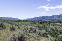 Free Desert Landscape With Spirit Ridge And Lake Osoyoos In The Backg Royalty Free Stock Image - 120039766
