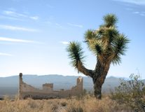 Desert Landscapes. Falling down building in a ghost town Nevada desert Stock Image