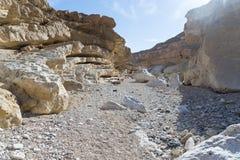 Hiking in Negev desert of Israel royalty free stock image
