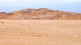Desert lanscape Stock Image