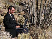Desert laptop user. A man in business attire works on a laptop sitting on a rock in the desert surrounded by cacti Stock Photo