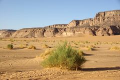 Desert in Libya Royalty Free Stock Photos
