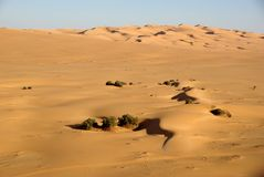 Desert of Libya Stock Image
