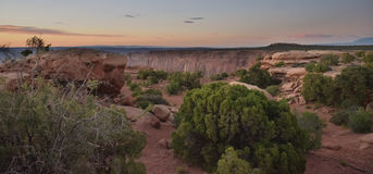 Desert Light. Desert sunset panorama with high dynamic range effect and brush in foreground Royalty Free Stock Photo