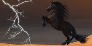 Desert Lightning Horse Royalty Free Stock Photography