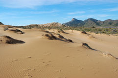Desert like beach sand in spain. Desert sand stripes in spain, parque natural de calblanque stock images