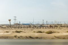 Desert beside of the main road with electricity posts and silhouette buildings in background at Dubai Stock Photo