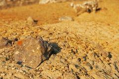 Desert martian landscape. Royalty Free Stock Images