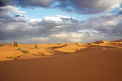 Desert at Merzouga Stock Photos