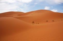 Desert at Merzouga , eastern Morocco Royalty Free Stock Images