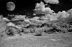 Desert Moon. Full moon in the Arizona Sonora desert Stock Photography