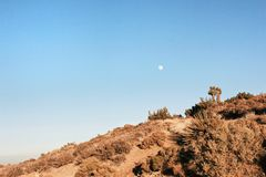 Desert Moon. Landscape view of the moon in the desert during the day Royalty Free Stock Photo