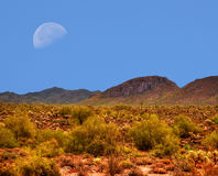 Desert Moon Stock Images