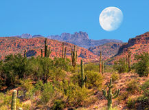 Desert Moon Royalty Free Stock Photos