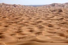 Desert in Morocco. Big dunes in the desert of Morocco Stock Photography