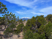 Desert Mountain. Central Colorado high desert with snow capped mountain royalty free stock photography