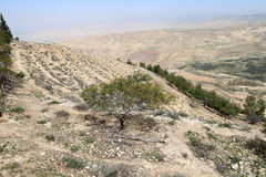 Desert mountain landscape (aerial view), Jordan, Middle East Royalty Free Stock Photo