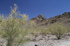 Desert Mountain Landscape with Cloudless Sky Stock Photo