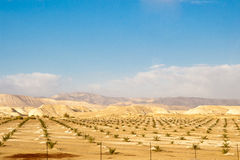 Desert and mountain scenery. Israel Royalty Free Stock Photos