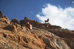 Desert mountains. In southern Tunisia Royalty Free Stock Photos