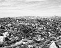 Desert Mountains. Black and white landscape of desert mountains Royalty Free Stock Images