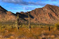 Desert Mountains. Cliffs and rock formations in arizona mountains Stock Photography