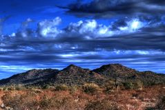 Desert Mountains. Desert saguaros and cactus in Arizona mountains Stock Image