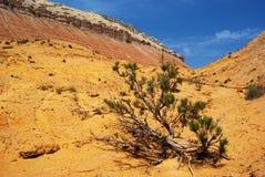 Desert mountains in Kazakhstan Stock Photography