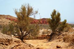 Desert mountains in Kazakhstan Royalty Free Stock Photos