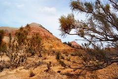 Desert mountains in Kazakhstan Royalty Free Stock Images