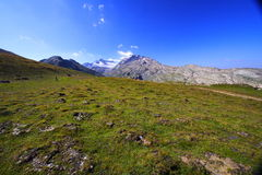 Desert mountains in summer Royalty Free Stock Photos