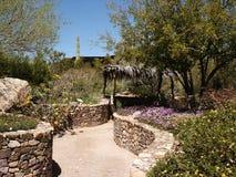 Desert Museum. Floral area in the Arizona Sonora Desert Museum, Tucson stock images