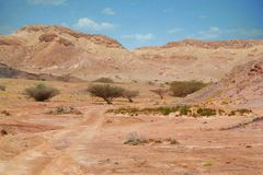 Desert of Nahaus Royalty Free Stock Photo