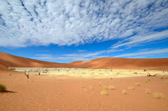 Desert Namib Royalty Free Stock Photography