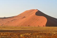 Desert Namib Royalty Free Stock Image