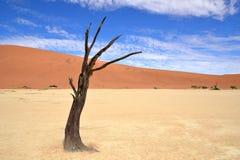 Desert Namib,Namibia,Sossusvlei pan Stock Photography