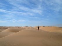 Desert in Namibia Stock Photography