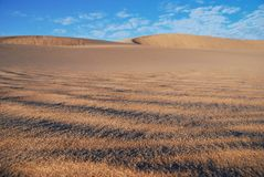 Desert in Namibia Stock Image