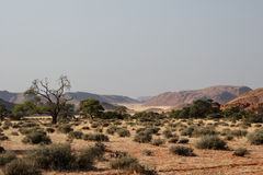 Desert in Namibia. Desert landscape in southern Namibia stock photo