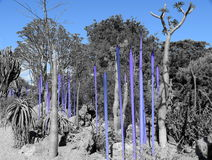 Desert Nature Art in Blue Royalty Free Stock Photos