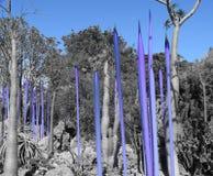 Desert Nature Art in Blue Stock Image