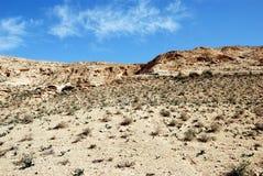 Desert Negev. Fragment of desert under blue sky. Desert Negev, Israel Royalty Free Stock Images