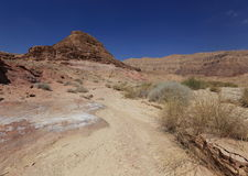 Desert. Negev near Eilat, Israel Royalty Free Stock Photography