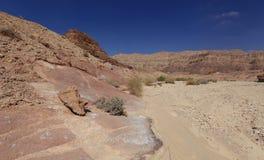 Desert. Negev near Eilat, Israel Stock Photography