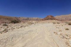 Desert. Negev near Eilat, Israel Royalty Free Stock Photo