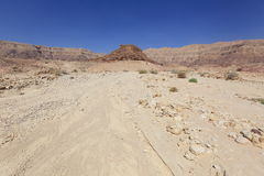 Desert. Negev near Eilat, Israel Stock Images