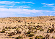 Desert of New Mexico. Landscape in New Mexico, seen from the highway. Living in the desert Royalty Free Stock Photo