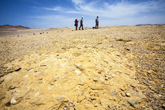Desert next to the ocean in National Park Paracas in Ica, Peru Royalty Free Stock Photo
