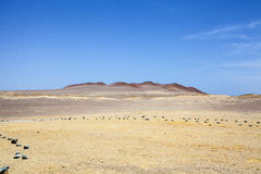 Desert next to the ocean in National Park Paracas in Ica, Peru Stock Photography